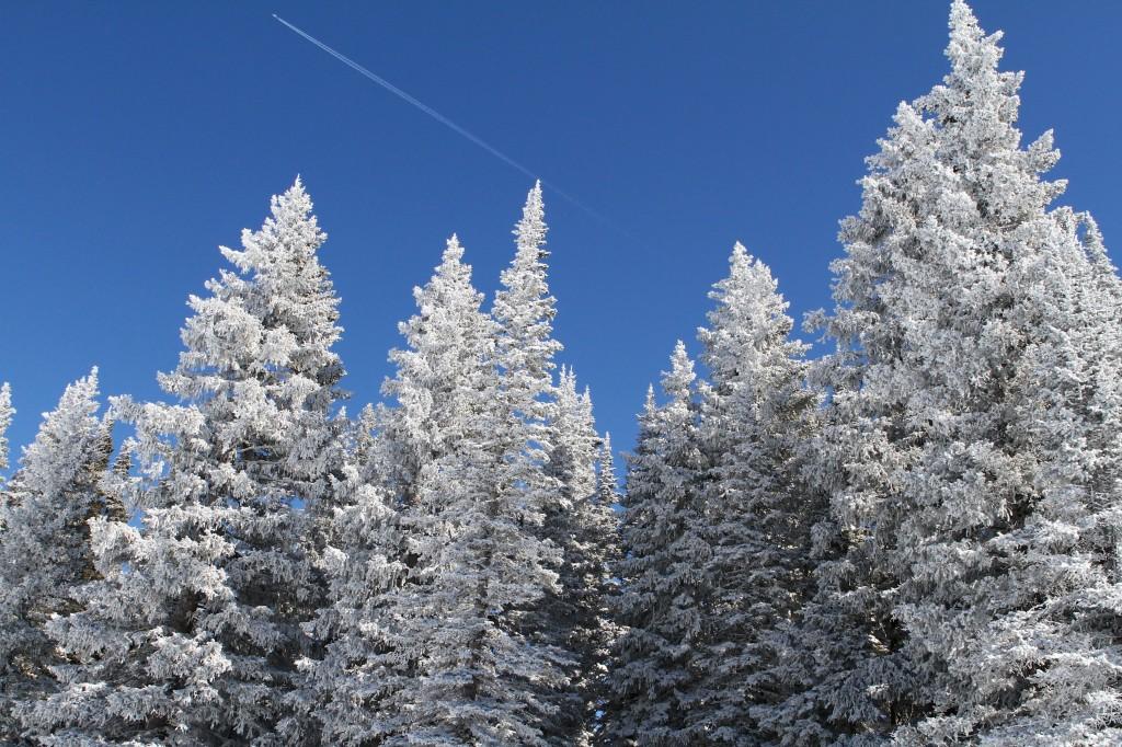 Cobalt Blue Skies