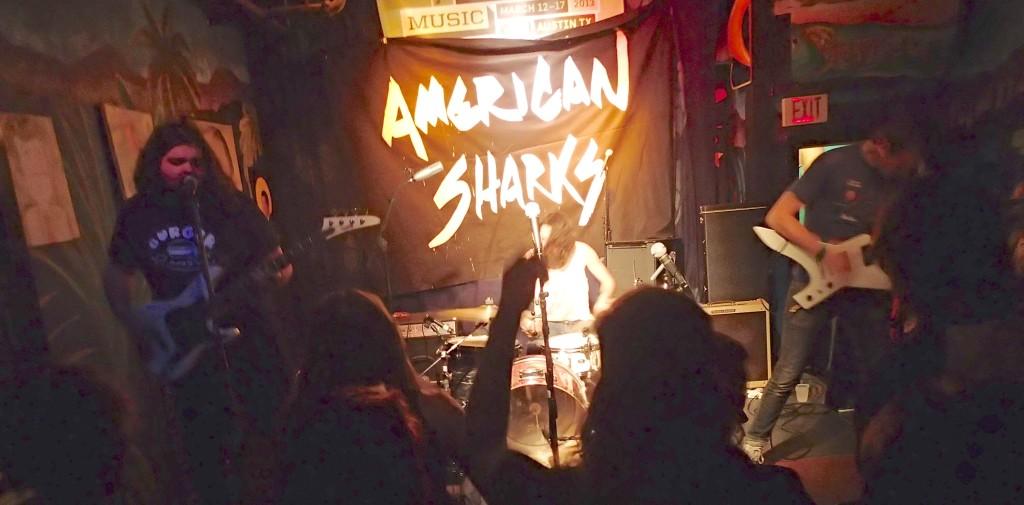 American Sharks!  Heck yea!