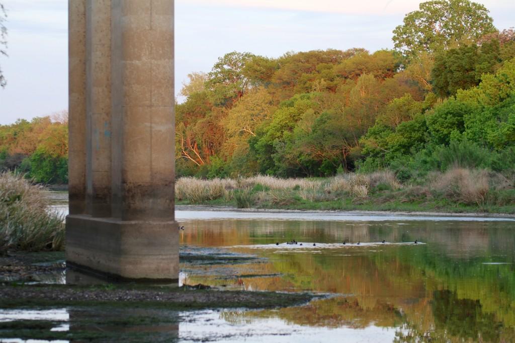 Montopolis Bridge and the Colorado river