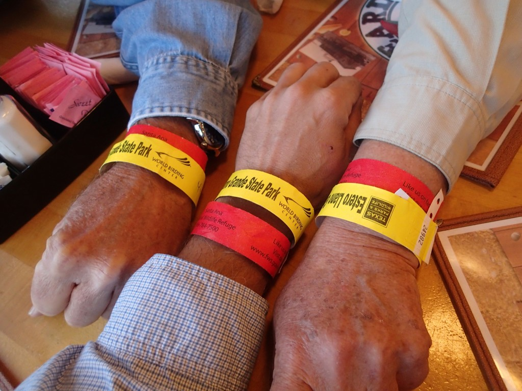 Wrist bands to show entry to the World Birding centers