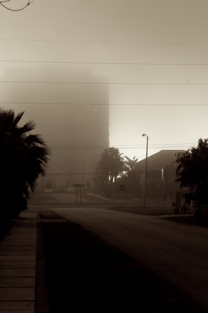 Dawn Looking west