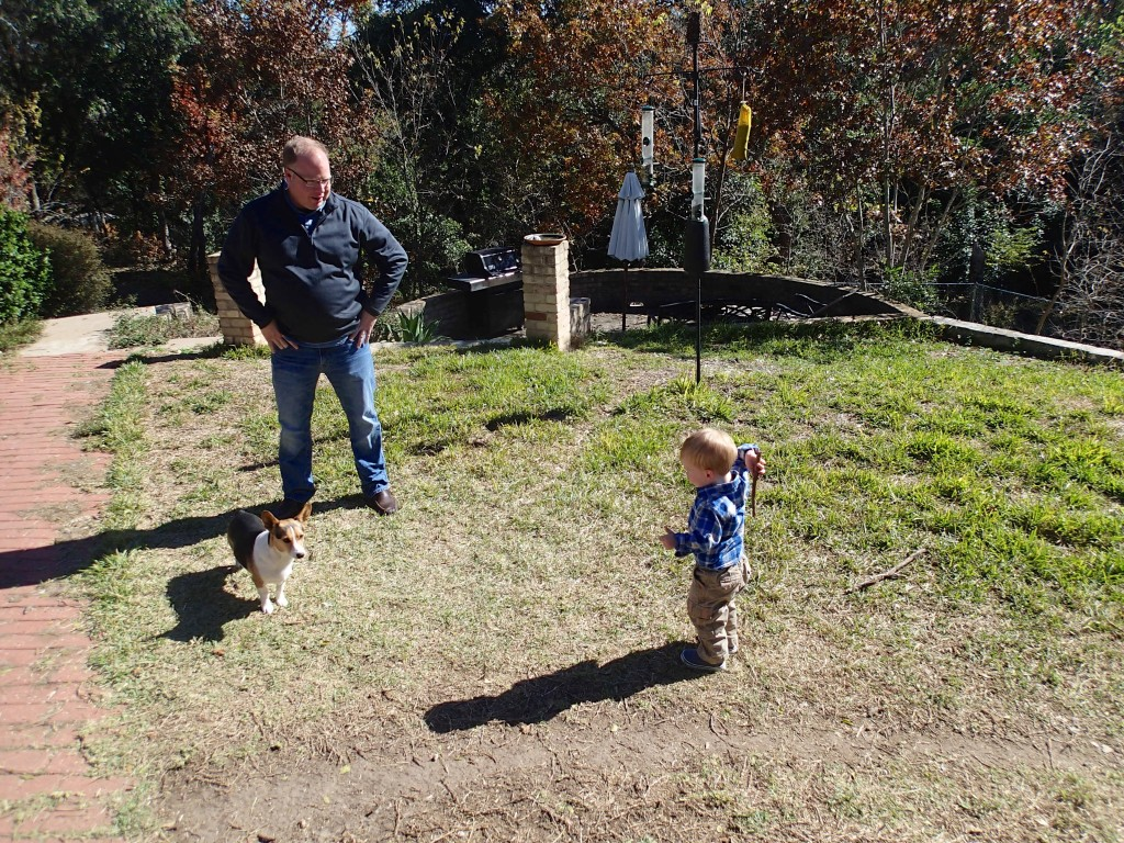 Chase and Liam Get chuck into a rousing game of fetch