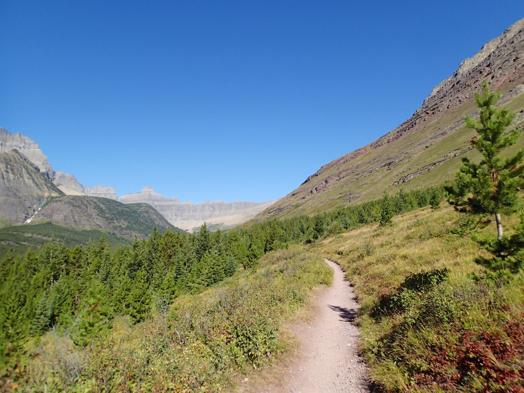 Delightfully flat section of the trail